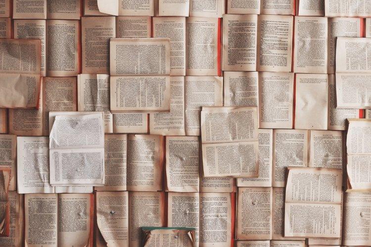 Abertas as candidaturas ao Prémio Literário Ferreira de Castro