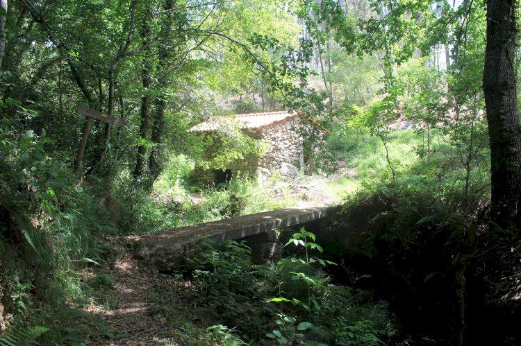 Pelos Trilhos de Portugal-A Rota da Ribeira de Várzea, Viseu