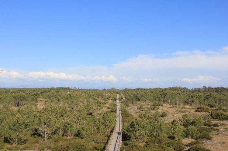 Pelos Trilhos de Portugal-À descoberta das Dunas de São Jacinto, Aveiro
