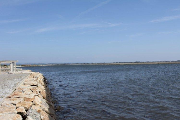 Pelos Trilhos de Portugal-Percurso da Murtosa, Murtosa