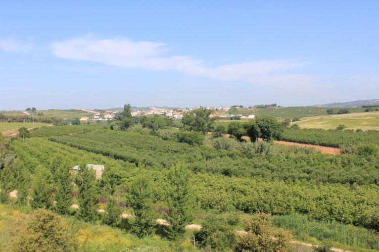 Pelos Trilhos de Portugal-Do Mestre de Avis à República, Bombarral