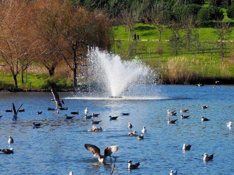 Pelos Trilhos de Portugal-Percurso no Parque da Paz, Almada