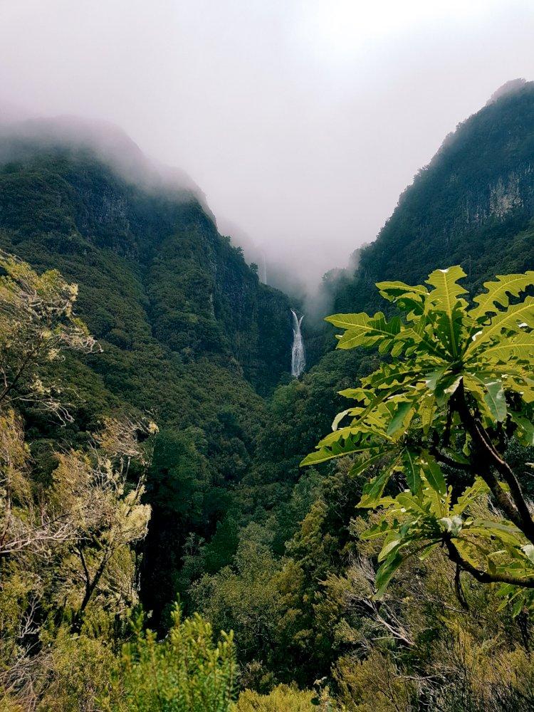 Pelos Trilhos de Portugal-Levada do Alecrim, Calheta, Madeira