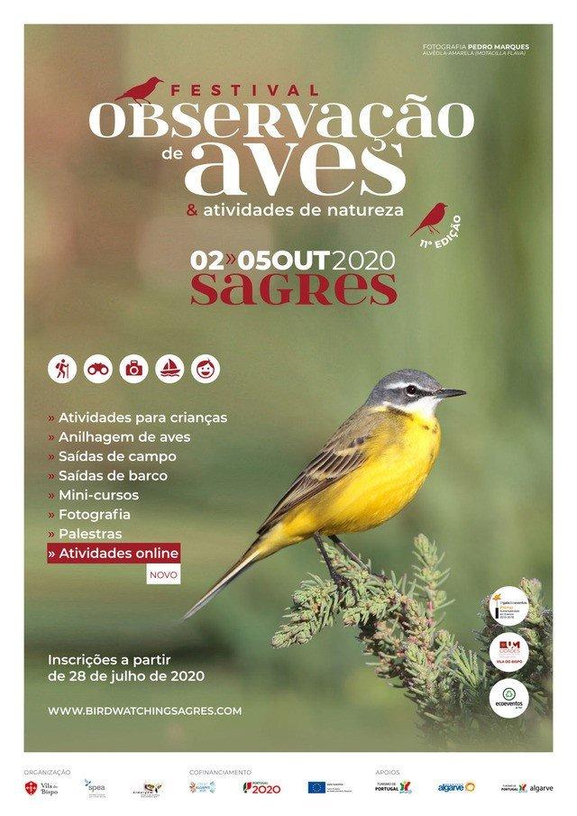 Festival de Observação de Aves & Atividades de Natureza, o maior evento de natureza do país está de volta a Sagres
