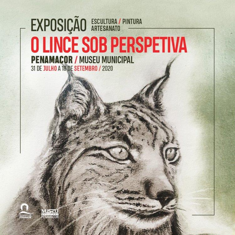 """Exposição do """"Concurso de Criação Artística - O Lince sob Perspectiva"""" inaugurada a 31 de Julho"""