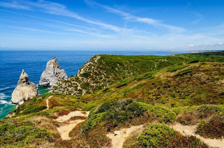 Autarquia aprova projeto para criação de Área Marinha Protegida em Sintra