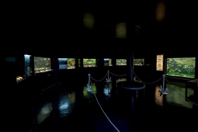 Aquamuseu do rio Minho com entradas gratuitas no domingo