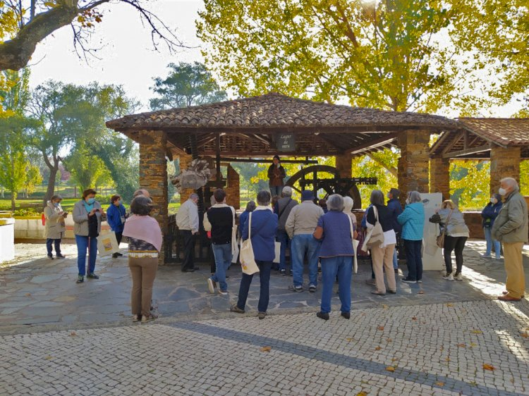 Sertã:Estrada Nacional 2 continua a atrair entusiastas