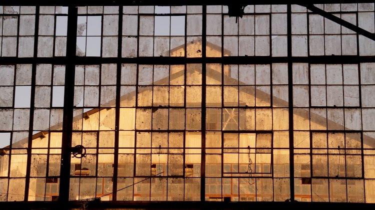 Maus Hábitos acolhe exposição coletiva Contracto Natural com curadoria de Bruno Leitão (Hangar)