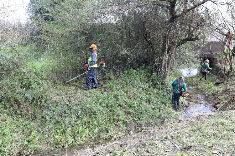Câmara de Cantanhede promove limpeza e desobstrução de linhas de água