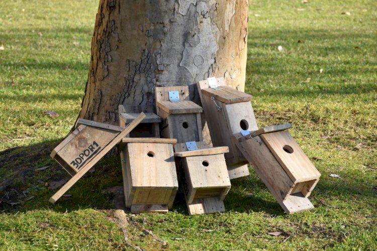 Projeto NAPA – instalação de ninhos artificiais nos jardins de Torres Novas