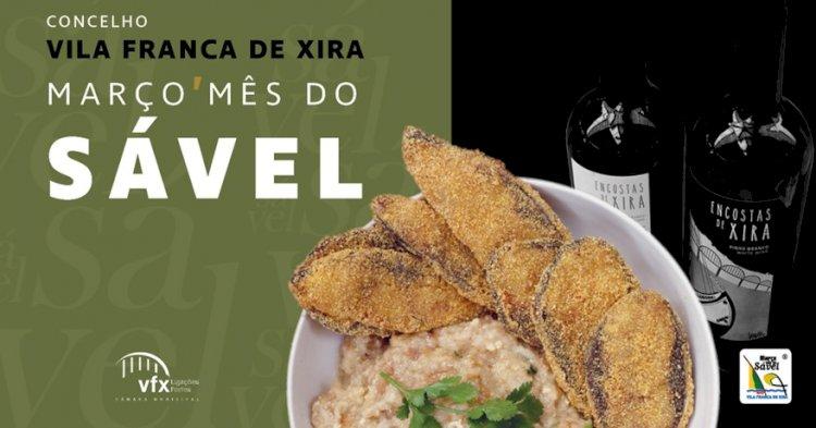 Março é o mês do Sável em Vila Franca de Xira