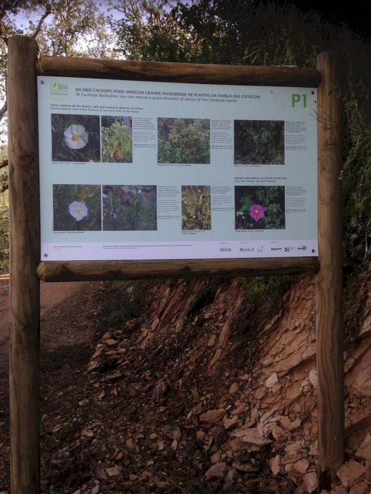 Tavira inaugura a Estação da Biodiversidade de Cachopo