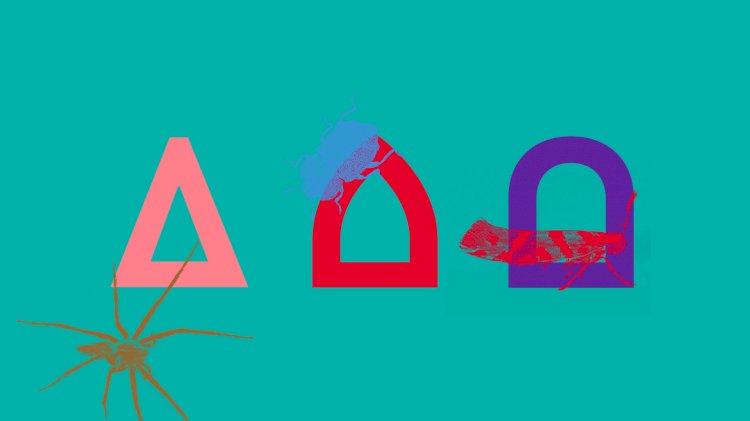 Conhecidos os 9 artistas selecionados para o programa de residências artísticas do Azores 2027